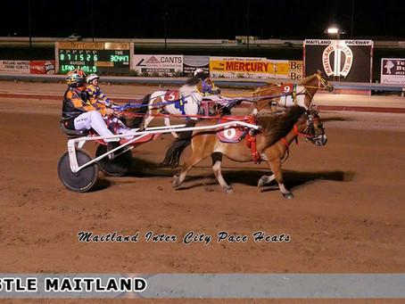 Maitland Inter City Pace Heats