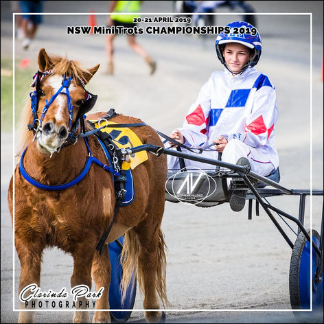 New South Wales Mini Trots Association Championships 2019 - Courtney Laker with Bad Boy Rusty
