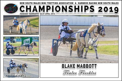 MABBOTT Blake - Tralee Freckles - 000