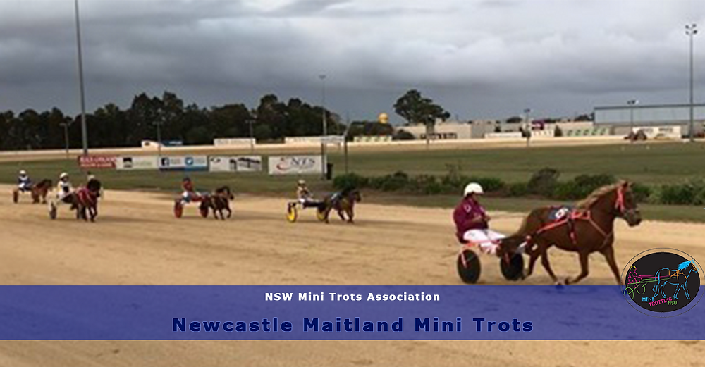 Newcastle Maitland Mini Trots Double Header Weekend. NSWMTA