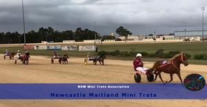 Newcastle Maitland Mini Trots Double Header Weekend. NSWMTA