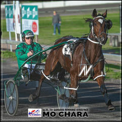 MO CHARACLOUDIN UP, driven by Robert Harris, wins at Parkes Trots last 19 July 2020