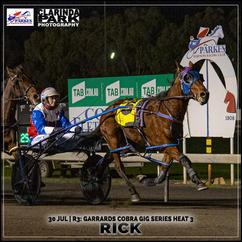RICK, driven by Amanda Turnbull, won at the Parkes Trots