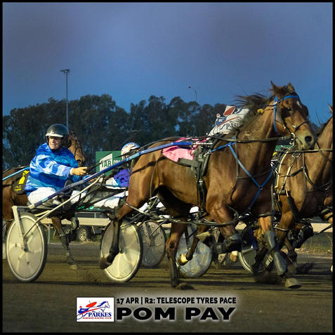 POM PAY, driven by Graham Betts, won at the Parkes Trots