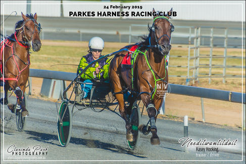 Race 2 - LANGLANDS HANLON Pace - Needitwantitdoit - Kasey Hocking