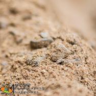 Pre-Mix | Sand, Gravel, & Cement | Parkes Landscaping Supplies