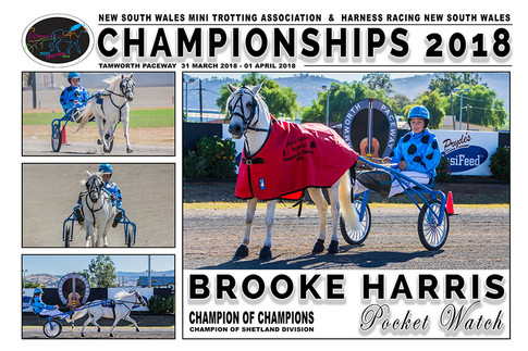 NSW Mini Trots Championships 2018 - Brooke Harris with Pocket Watch