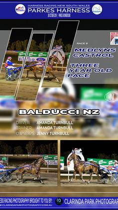 BALDUCCI NZ wins at Parkes Harness Trots