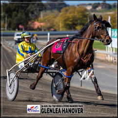 GLENLEA HANOVER, driven by James Sutton, wins at Parkes Trots last 30 August 2020
