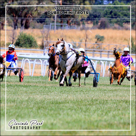12 FEBRUARY 2017 - Dubbo Mini Trots at Orange Harness Racing Club