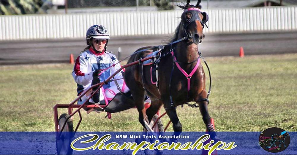 Pony Division winner Velvets Little Star driver Grace Panella. NSW Mini Trots Championships 2017.