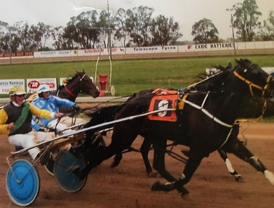 Keith Thomson driving at the Parkes Trots.