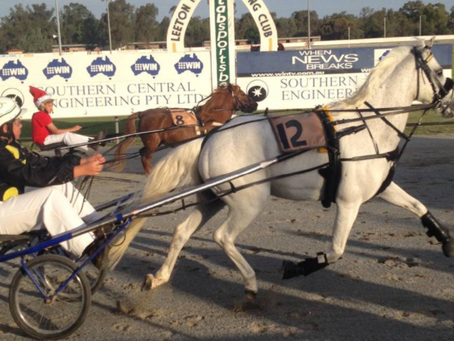 Holiday flavour to mini-trotting event