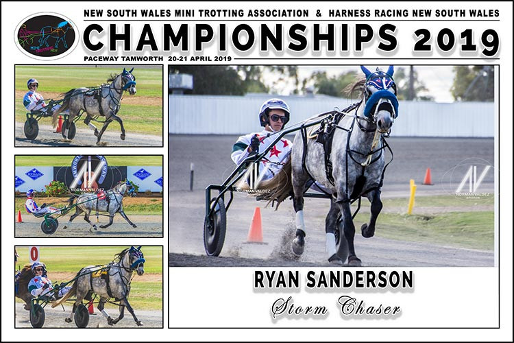 Ryan Sanderson with Storm Chaser during the 2019 New South Wales Mini Trotting Championships