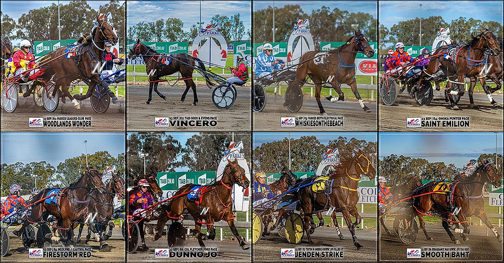 PARKES HARNESS Racing Club winners - 13 Sep 2020 - WOODLAND WONDERS - VINCERO - WHISKIESONTHEBEACH - SAINT EMILION - FIRESTORM RED - DUNNO JO - JENDEN STRIKE - SMOOTH BAHT