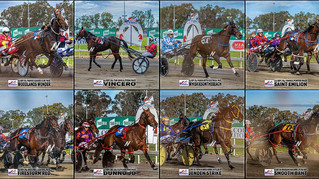 Congratulations to PARKES HARNESS Racing Club Race Meeting Winners - 13 September 2020
