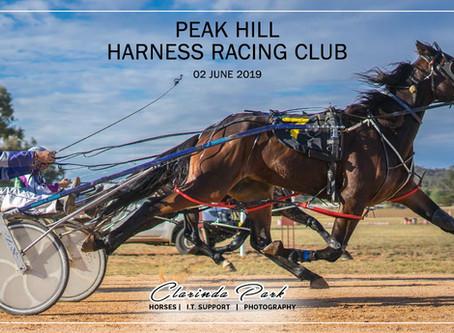 Peak Hill Harness Racing Club Winners - 02 June 2019