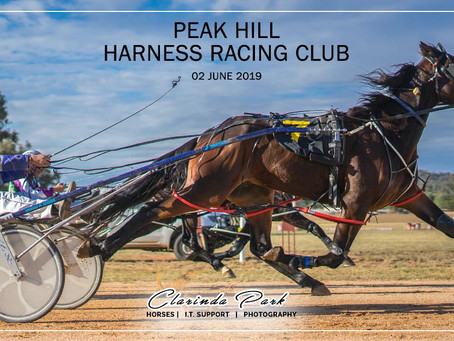Peak Hill Harness Racing Club Winners - 02 June 2019