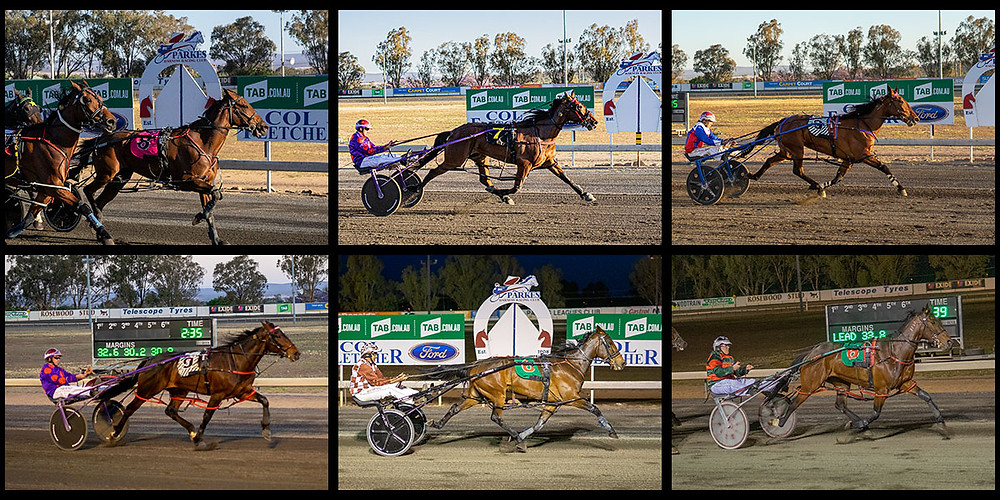 PARKES HARNESS Racing Club winners on 13 November 2019: Neverhaveiever - Threes A Charm - Cathy Brown NZ - The Mustang - Impersonate - Kingston Shannon