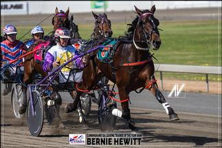 BERNIE HEWITT - Cunnighams IGA Leading Driver Of The Year 2020