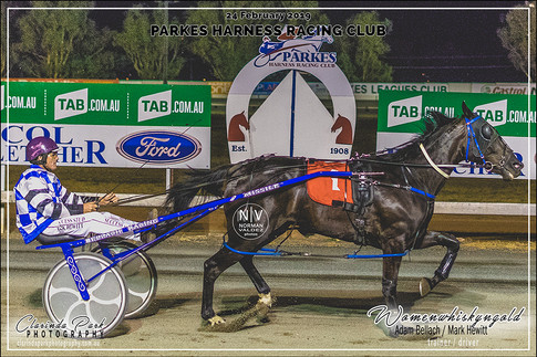 R8 GET REAL SUPPORT TEAL 3YO COLTS AND GELDING Pace - WOMENWHISKYNGOLD - Mark Hewitt - 102
