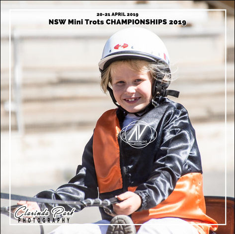 New South Wales Mini Trots Association Championships 2019 - Cassidy Campbell