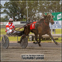 TULHURST LOVER, driven by Nathan Hurst, wins at Parkes Harness