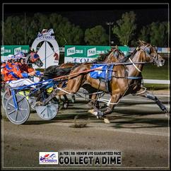 COLLECT A DIME wins at Parkes Trots