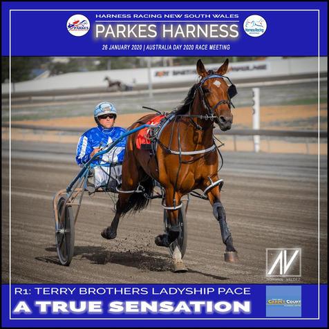 PARKES HARNESS AUSTRALIA DAY - Race 1 - TERRY BROTHERS LADYSHIP PACE - A TRUE SENSATION wins at Parkes Trots.