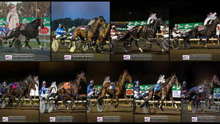 Congratulations to PARKES HARNESS Racing Club Race Meeting Winners - 17 April 2021
