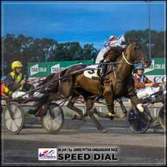 SPEED DIAL, driven by Robert Clifford, wins at Parkes Trots
