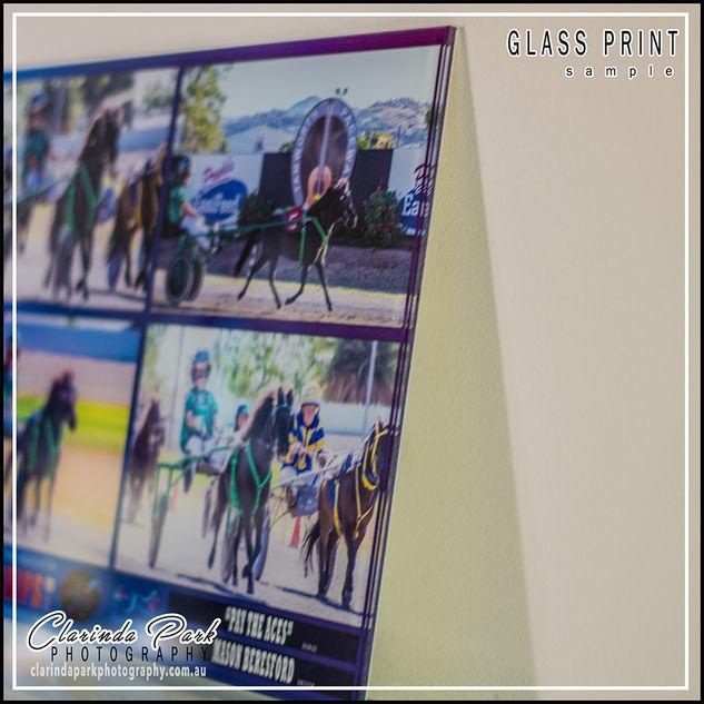 GLASS PRINT Wall Decor Samples