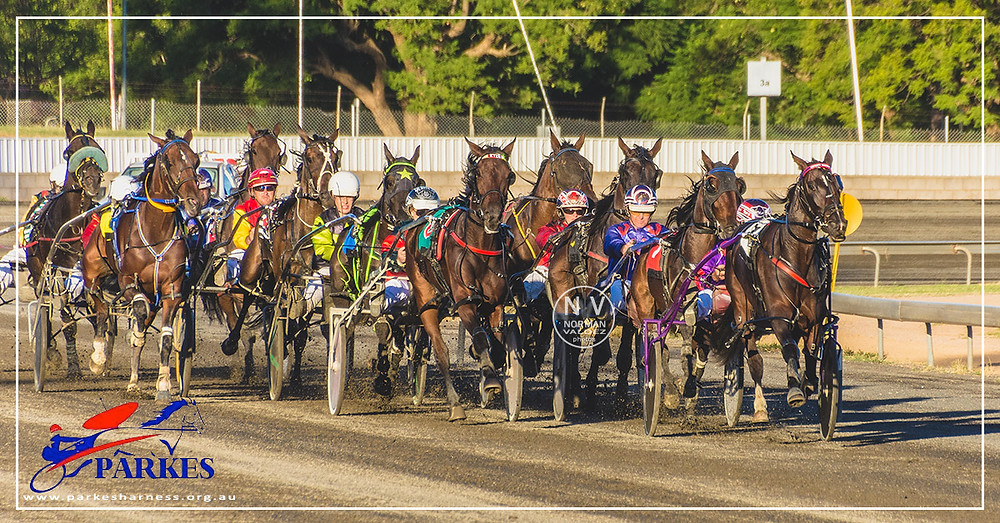 Parkes Harness Racing Club harness race meeting HRNSW Western Districts WDHRA