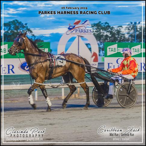 "Race 4 ""TAB.com.au PACE"" Winner: Caribbean Jack"