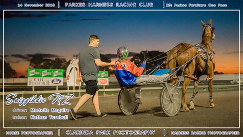 20181114 - Parkes Harness - R5 - Parkes Furniture One Pace - 002