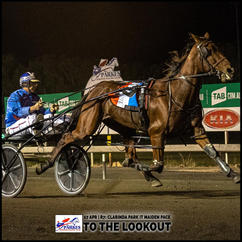 TO THE LOOKOUT, driven by Jason Turnbull, won at the Parkes Trots