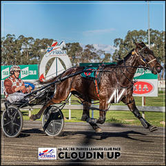 CLOUDIN UP, driven by Nathan Townsend, wins at Parkes Trots last 19 July 2020