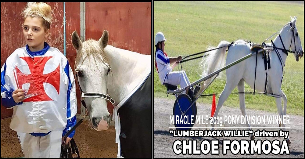 NSW Mini Trots Miracle Mile 2019 Pony Division Winner - LUMBERJACK WILLIE driven by CHLOE FORMOSA