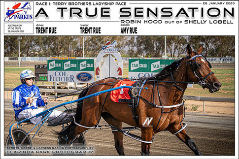 Australia Day At The Trots 2020 - Parkes Harness Racing Club