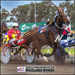 WOODLANDS WONDER, driven by Toby Inwood, wins at Parkes Harness