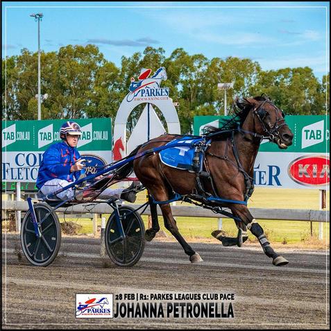 JOHANNA PETRONELLA, driven by Jason Turnbull, won at Parkes Trots