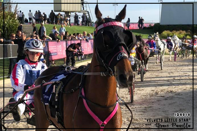 Mini Trots Inter Dominion 2018 - Pony Division Champion - Velvets Little Star driven by Grace Panella