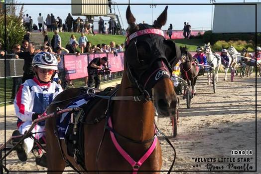 Mini Trots Inter Dominion 2018 - Pony Division Champion - Velvets Little Star driven by Grace Panella