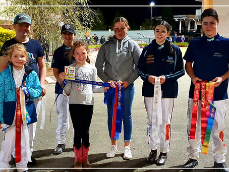 Lily McCarthys Debut In Mini Trots With A Win | Menangle Park Mini Trots