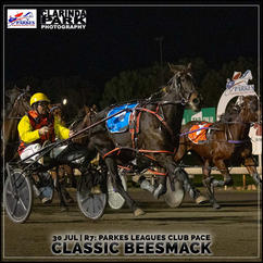 CLASSIC BEESMACK, driven by Rodney Crowe, won at the Parkes Trots