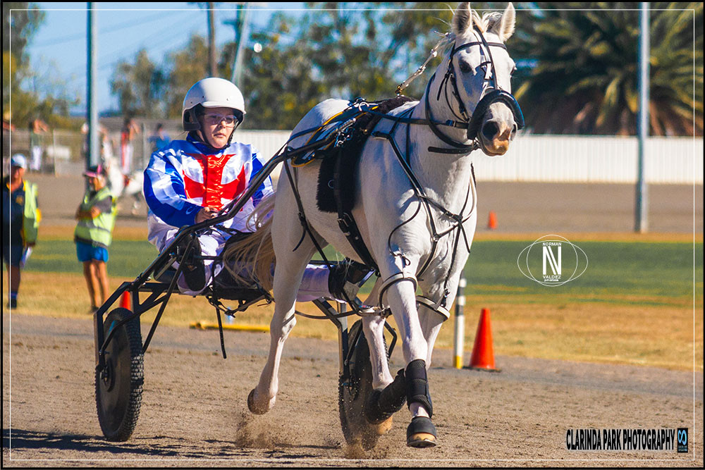 Chloe Formosa driving Lumberjackwillie during the NSW Mini Trotting Championships 2018 at Tamworth Paceway. Photo by Clarinda Park Photography