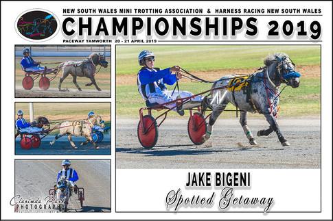 BIGENI Jake - Spotted Getaway - 000