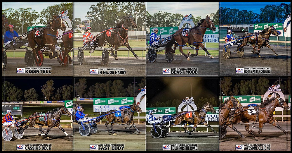 PARKES HARNESS - KISSNTELL - IM MAJOR HARRY - BEAST MODE - GOTTA PARTY DOLL NZ - CASSIUS DECK - FAST EDDY - FOUR FOR THE ROAD - AWESOME OLLIE NZ