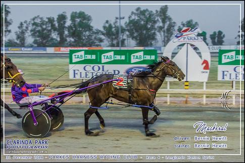 Race 4 - Langlands Hanlon Sprint - MACKERAL - Bernie Hewitt - 001