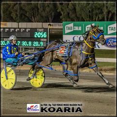 KOARIA wins at Parkes Trots